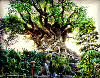 BEHIND THE TREE OF LIFE